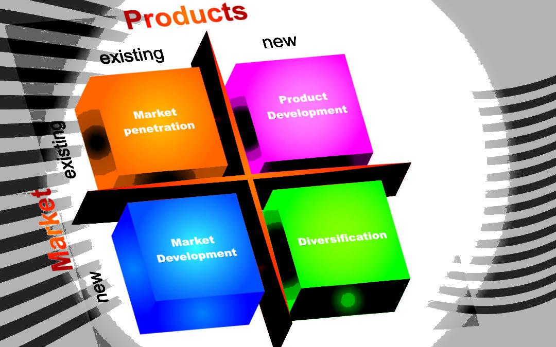 Ondernemen in 2013 deel 1. Crisis dwingt tot investeren in nieuwe klanten & markten, nieuwe diensten en sociale innovatie. Context met klantgericht ondernemen.